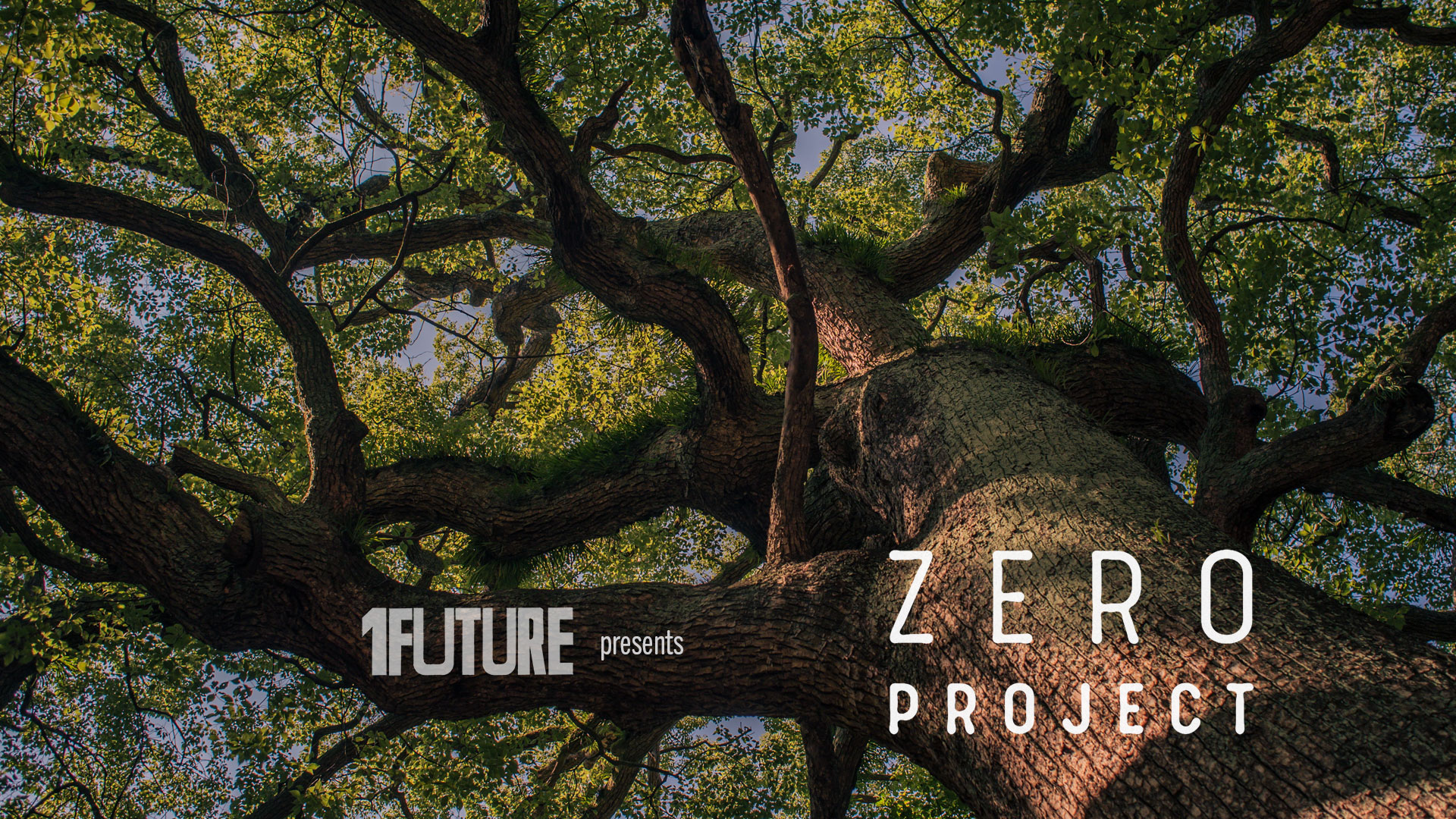 Zero project digital round table august 2020